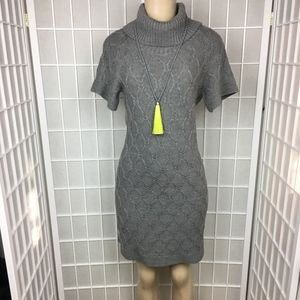 NWT Banana Republic FINE Wool Turtleneck Dress XS
